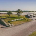 Bodegas Bianchi: Atención por la Sustentabilidad en el Ambiente Vitivinícola